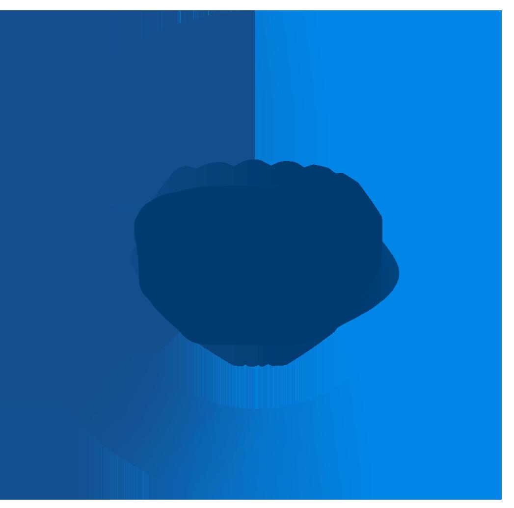 $300 million campaign goal